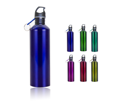 Classic Stainless Steel Custom Sports Water Bottle With Carabiner 25oz