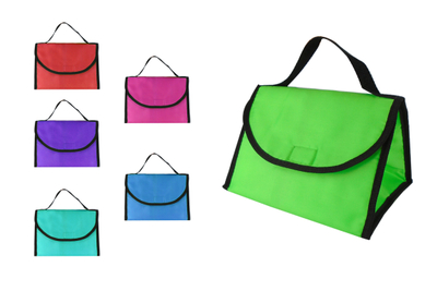 Triangle Lunch Cooler Bag